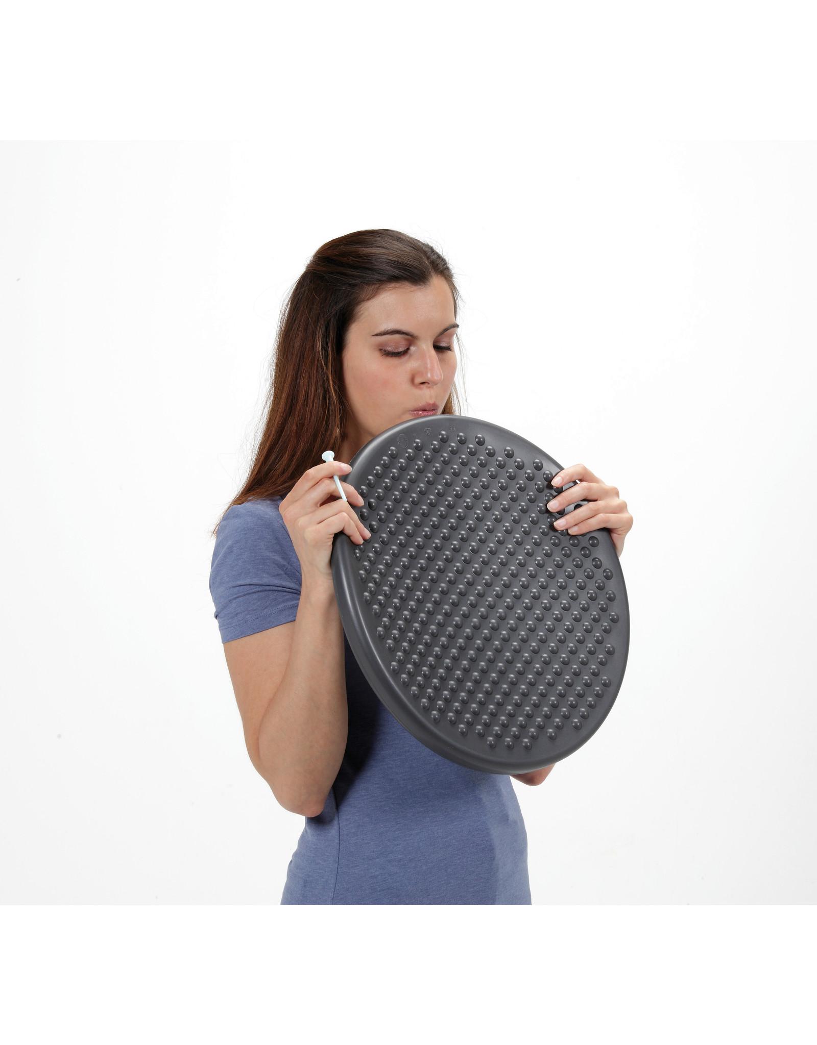 Gymnic Disc'o'Sit / GY