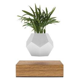 FLYTE Pot de fleurs Lyfe