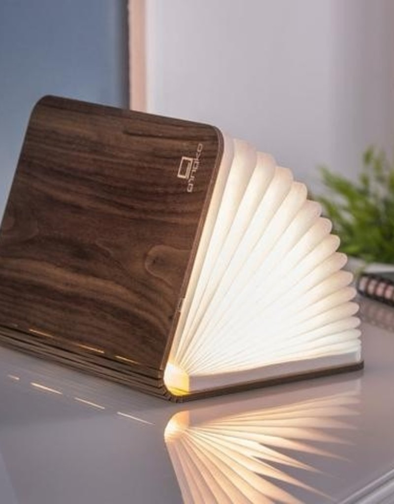 Lexon Livre Lumineux Smart Book Light