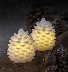 SIRIUS Bright Pine Cone Clara