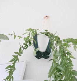 SPECKLING SUPSENION FOR A PLANT WHITE JUNGLE