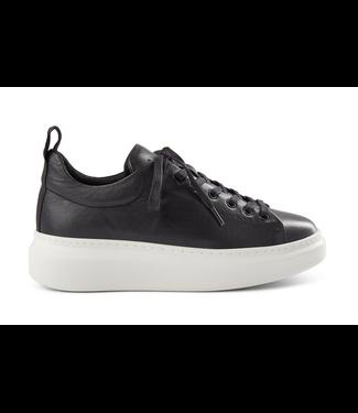 Pavement Dee Sneaker