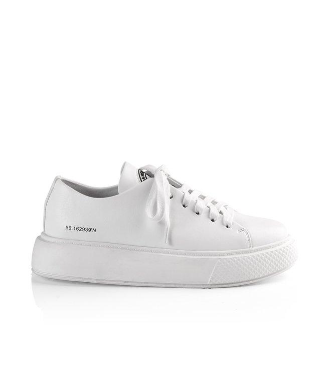 Entourage / Co Sneaker