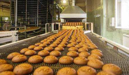 Lebensmittel- & Getränkeindustrie