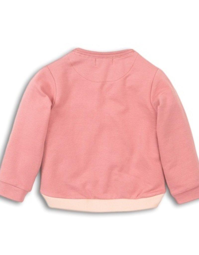 Dirkje Baby sweater dark old pink