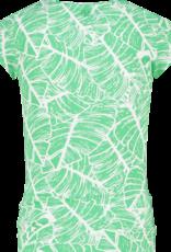 Raizzed Tulum grass green