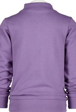 Raizzed Dundee grey purple