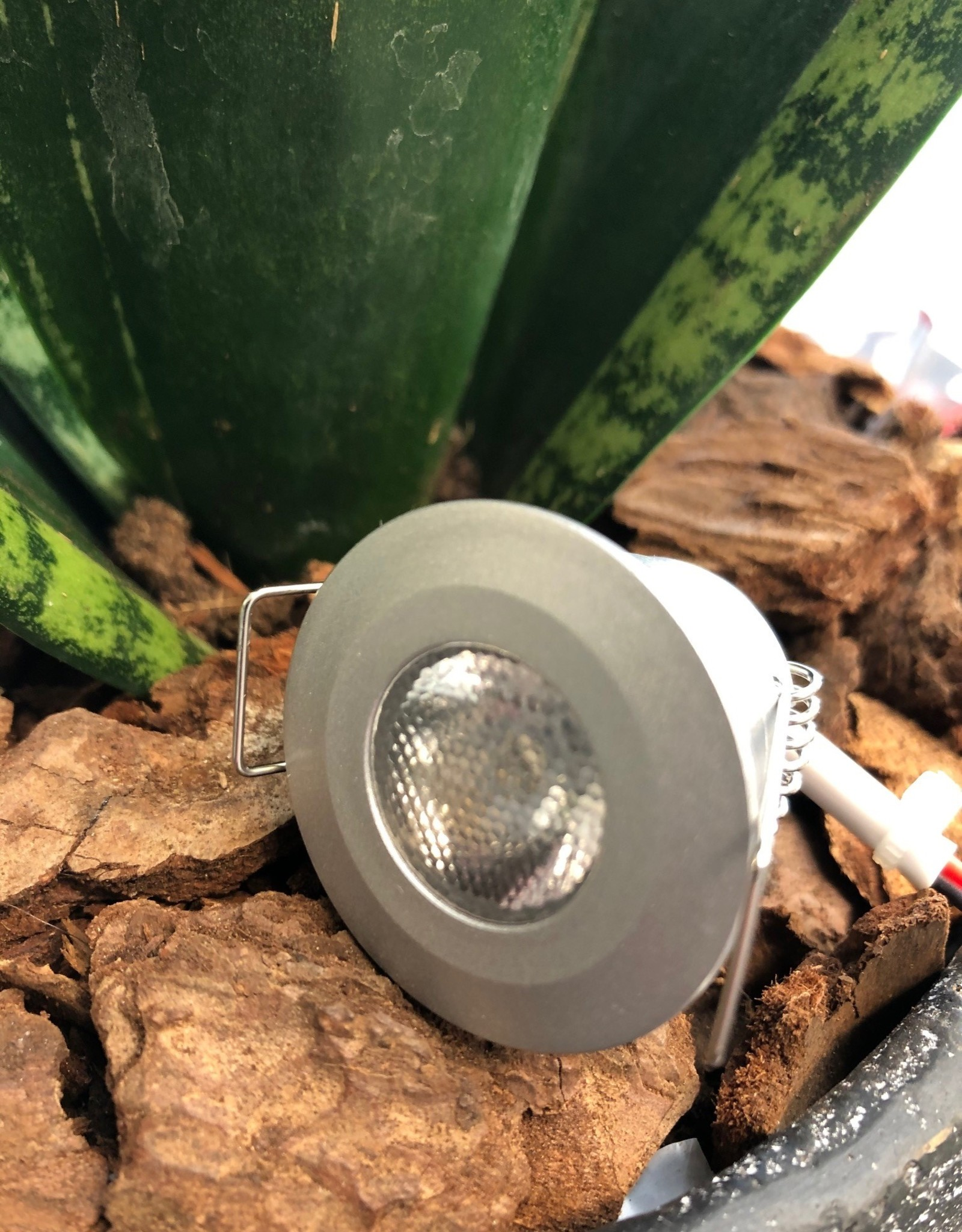 LedLed Ally mini LED spot rond zilver