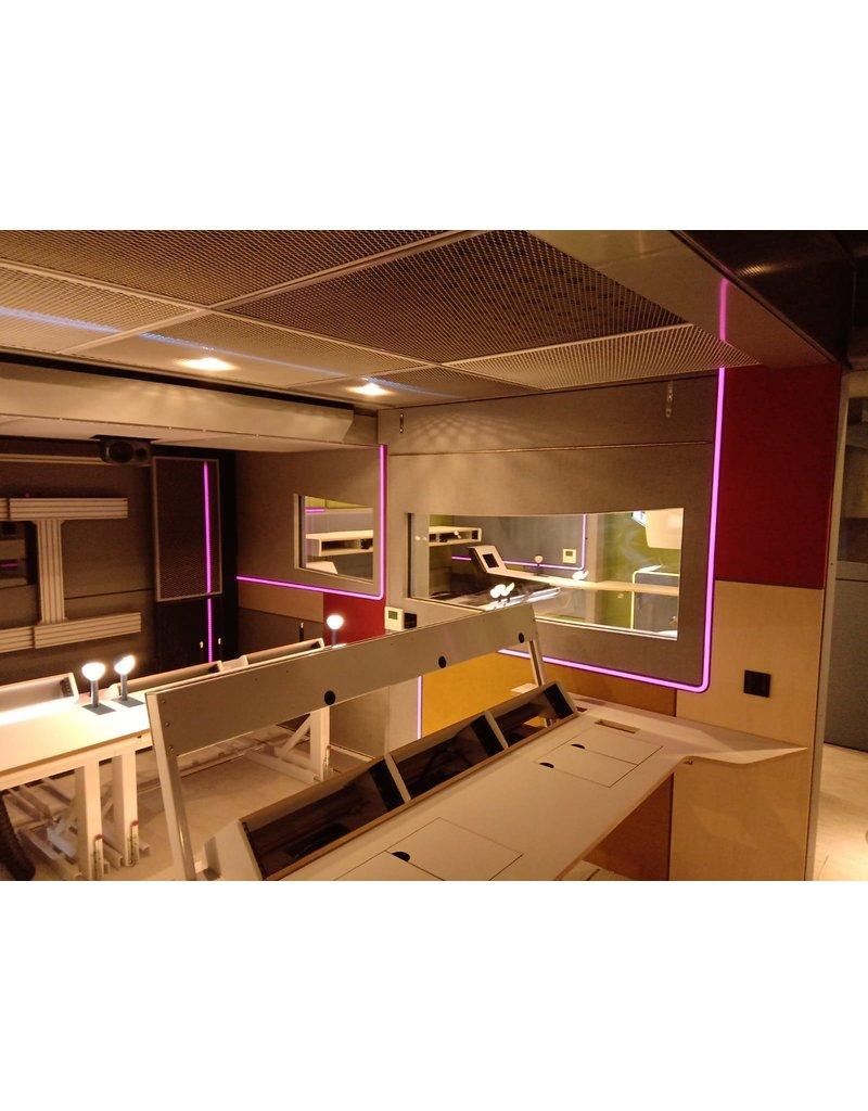 LedLed Neon flex LED strip RGB 24V 12W/m 12mm breed 24mm hoog (5 meter) IP65