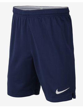 Nike JR Tottenham Home Short