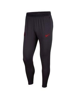 Nike PSG  Pant