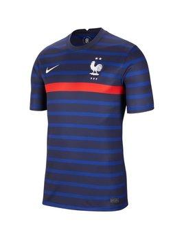 Nike Frankrijk Home Jersey