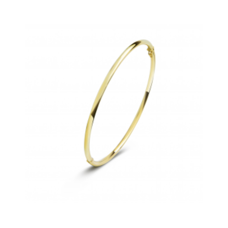 Fjory FJORY Armband 14k Geelgoud 2,5mm ovaal 40-R3058025