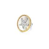 Tirisi Moda TIRISI  Schuif zilver met 18 karaat  geelgoud, parelmoer en een zeester van diamant TM6163 WM (2T)