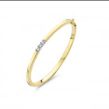 HuisCollectie HuisCollectie Slavenband 14k Geelgoud met 0.30ct diamant 602122