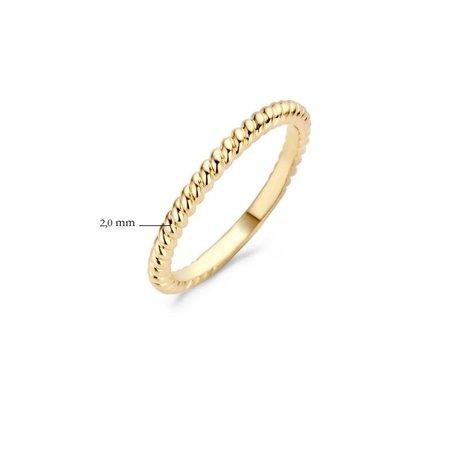 Blush Blush Ring 14k geelgoud tors breedte 2 mm 1118YGO