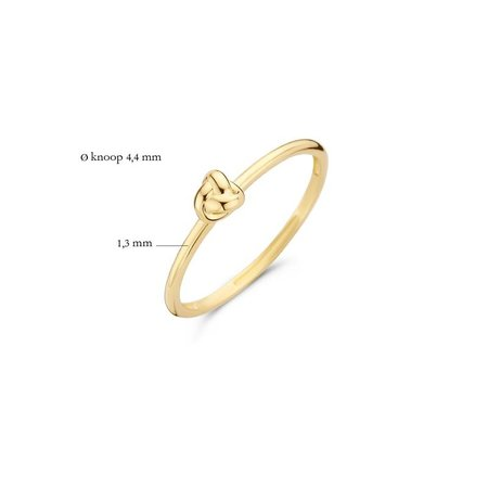 Blush Blush Ring 14k geelgoud 1193YGO