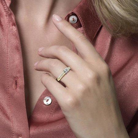 Blush Blush ring 14k geelgoud met zirkonia 5mm 1154BZI
