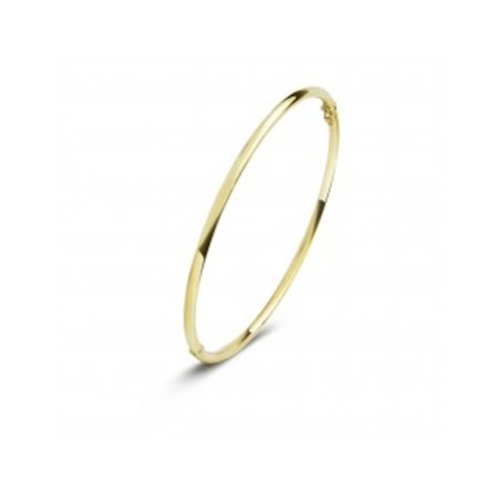 Fjory FJORY Armband 14k Geelgoud 2mm rond 40-A306102