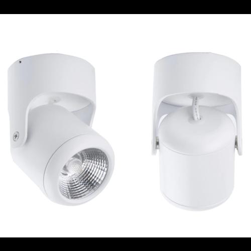Lumière sur rail LED 10W blanc ou noir dimmable monophasé