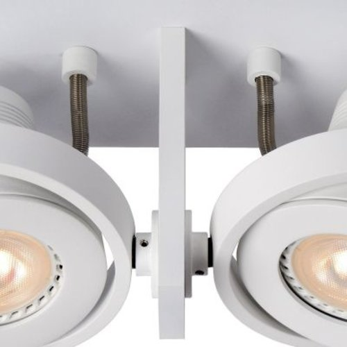 Double plafonnier 2x5W LED dim to warm blanc ou gris