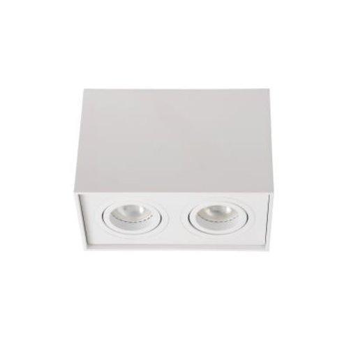 Plafonnier avec spots orientables 2xGU10 blanc ou noir 230V