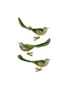Groene Vogeltjes met Kerstboomknijper