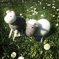 Én Gry & Sif handgemaakt grijs vilten schaapje