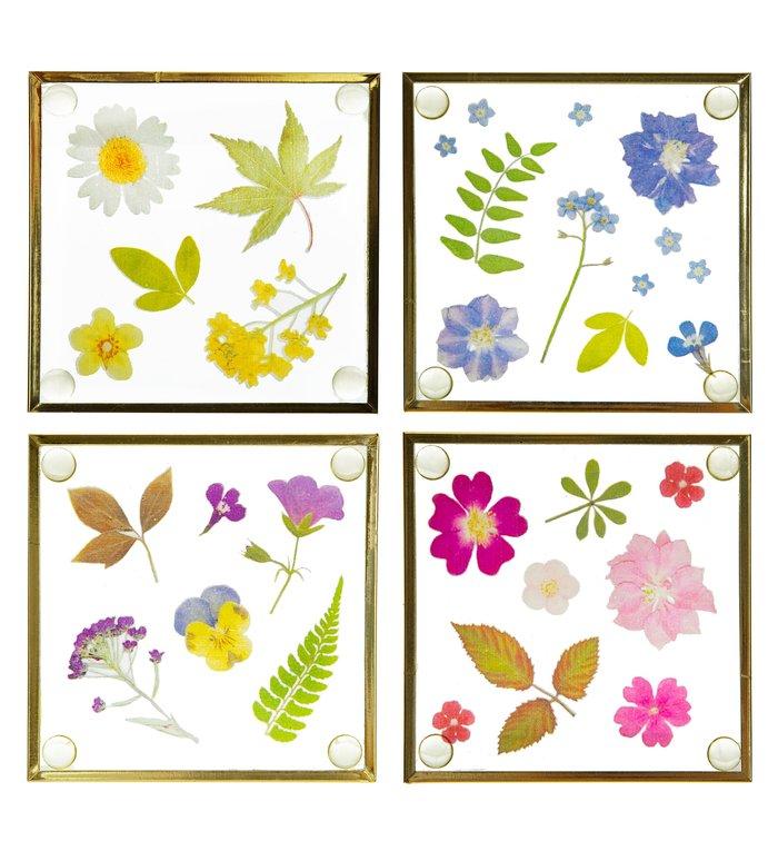 Sass & Belle Set van 4 onderzetters met geperste bloemmotieven