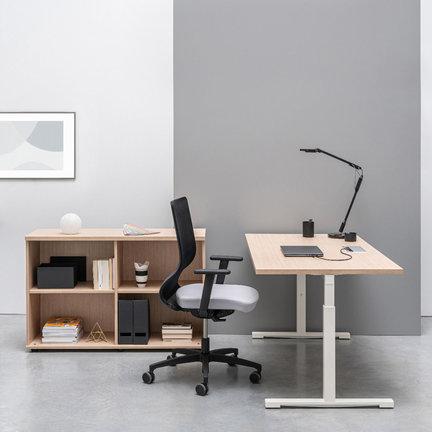 Home Office Möbel online kaufen