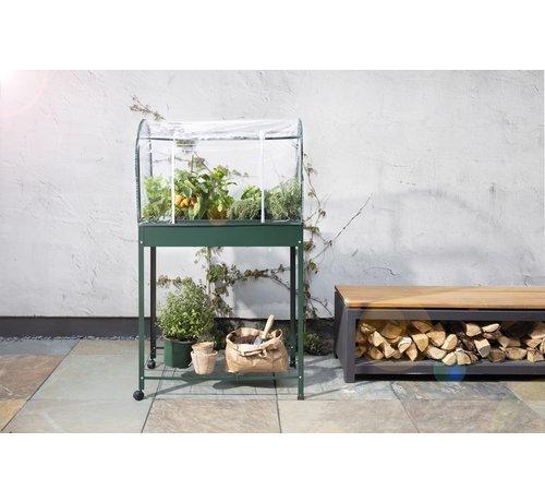 Urban Greenhouse Plantenkas