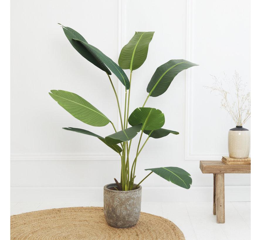 Kunstplant Strelitzia Plant - Kunststof - 150 cm