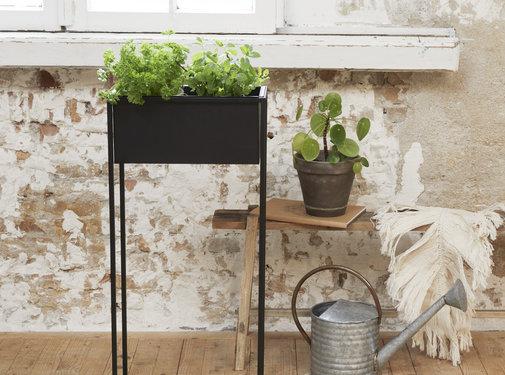 Lifa Living Prachtige Bloempot - Plantenbak Rosemary