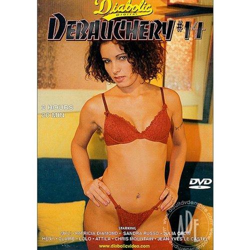 Vibies DVD Debauchery 14