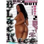 Vibies DVD Black Bubble Butt Hunt 2