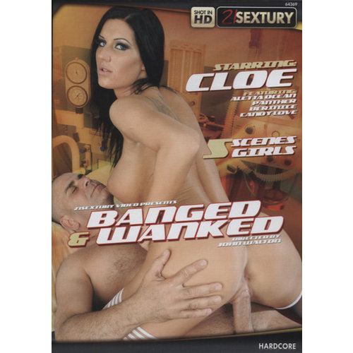 Vibies DVD Banged & Wanked