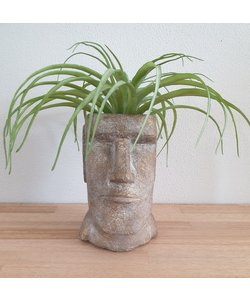 Planter Head Concrete Gold 15,5 x 15
