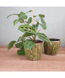 Bloempot Olive 14 cm