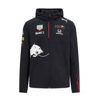 Red Bull Racing Teamline Hoody 2021