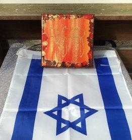 Chaipainter Chai schilderij in wedijverende kleuren rood en oranje.