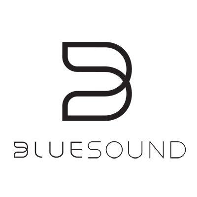 Bluesound Bluesound Module
