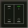 Glastaster II Light 2-voudig zwart t UP/Down en I/O Symbol met temp. sensor
