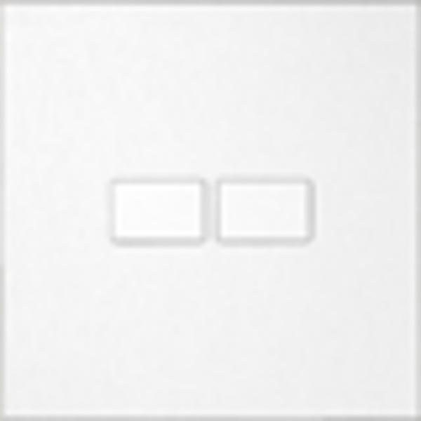 Ipas KNX Paneel  Largho 2-voudig met verhoogde knoppen (0,5 mm)
