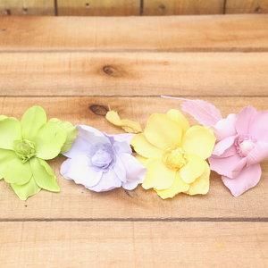 Helleborus pastel