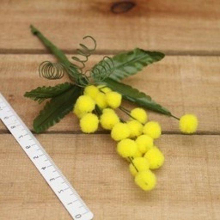 Mimosa geel groot