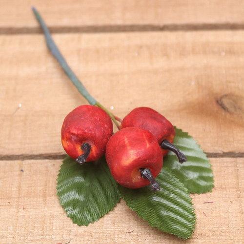 Appel met blad