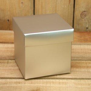 Zilver metallic mat