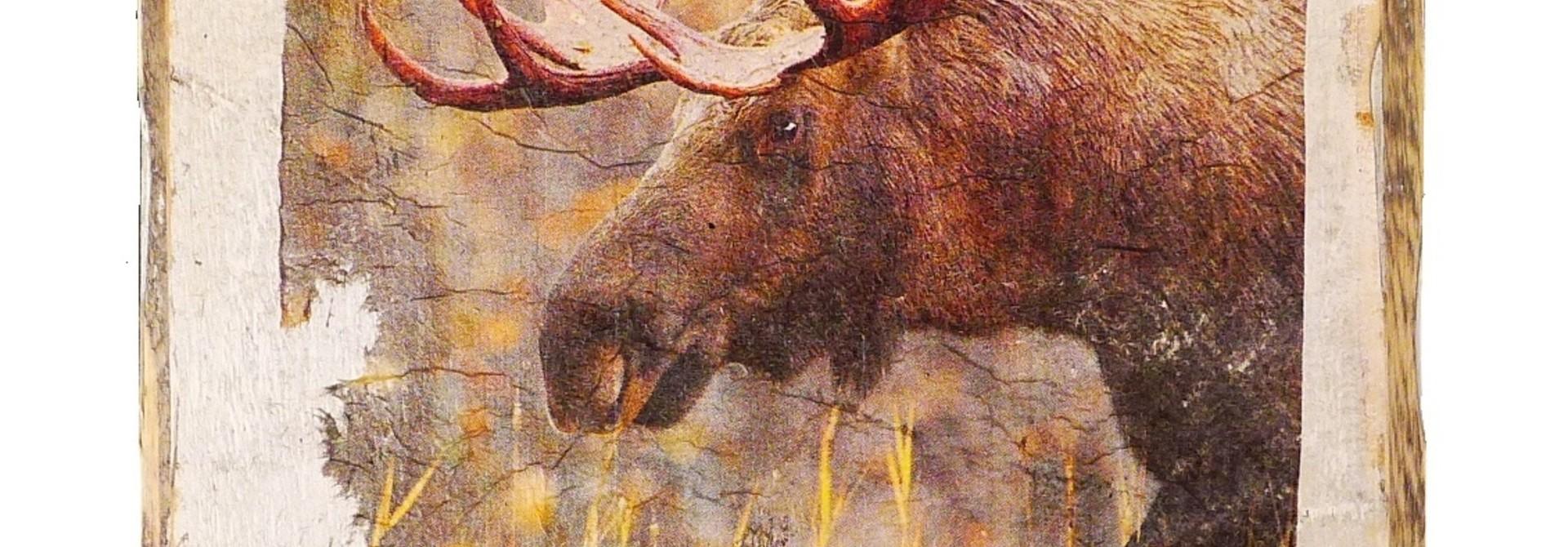 wooden tile old dutch moose out