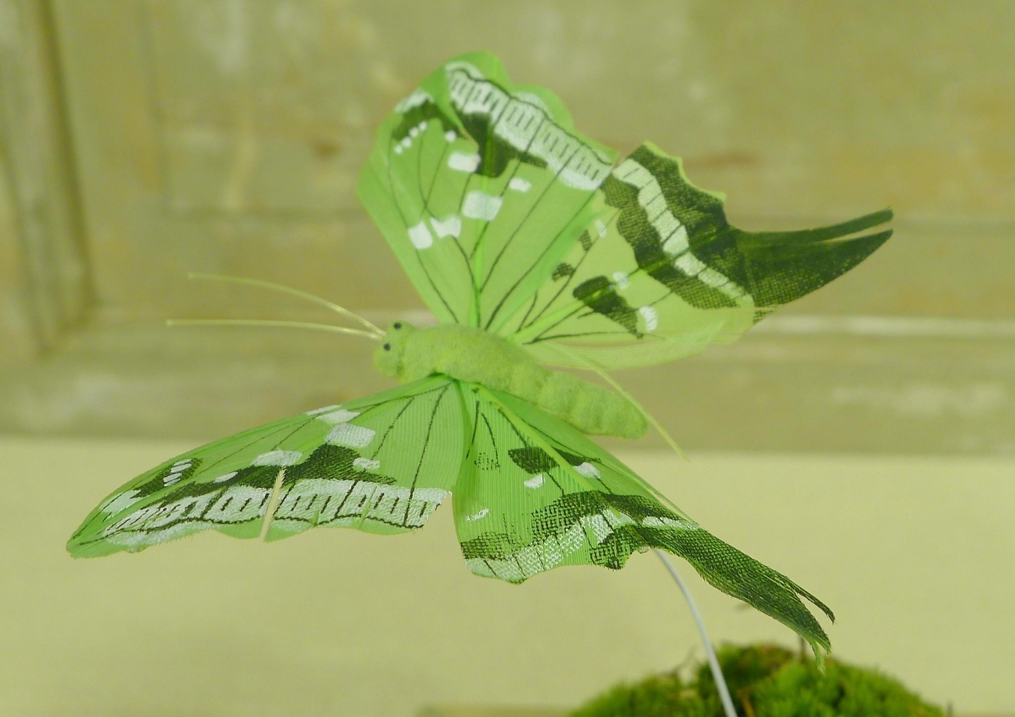 flor dec fabric butterfly 7.5 green-1