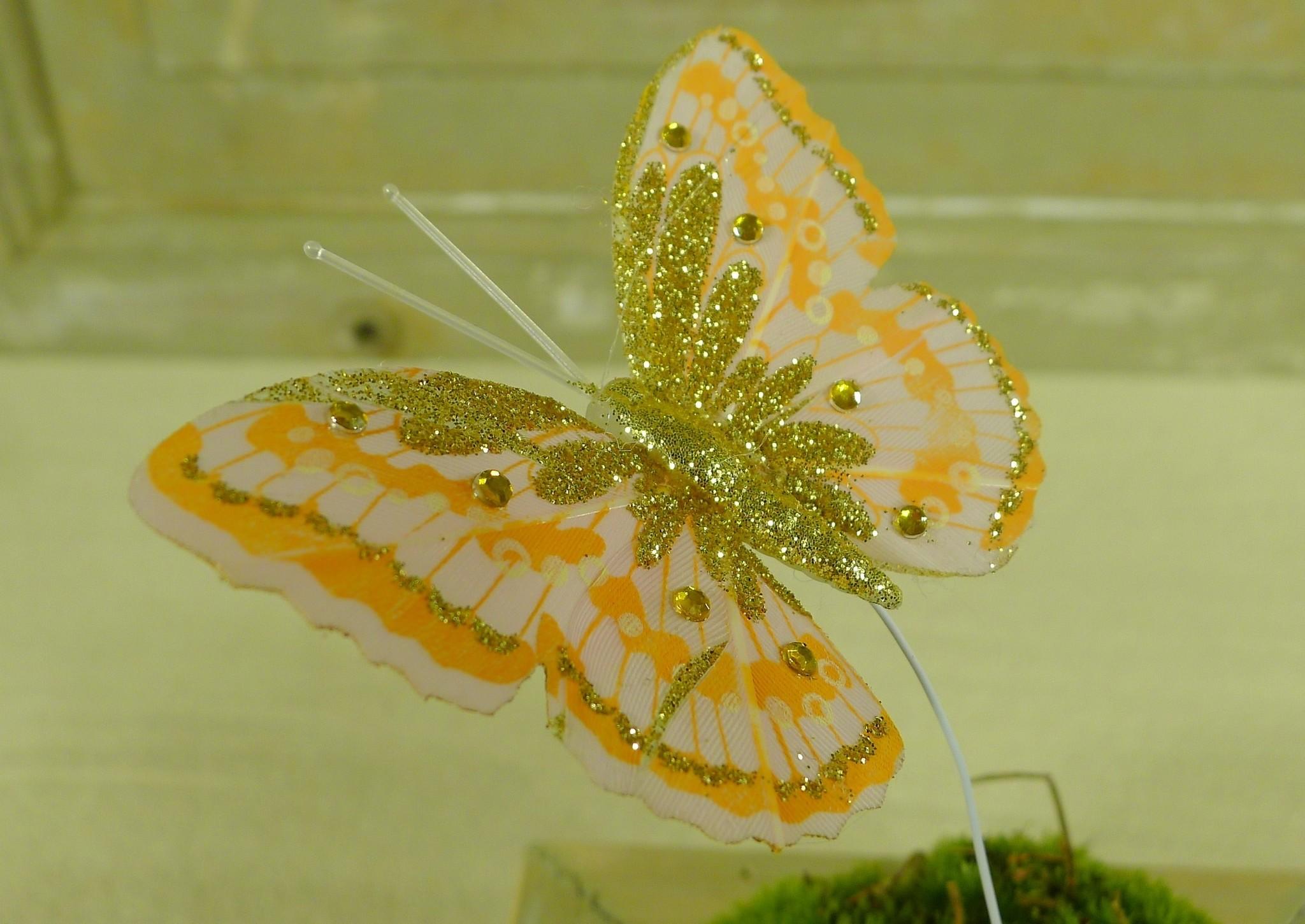 flor dec fabric butterfly 7.5 orange-2